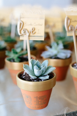 succulent wedding favor-1-2