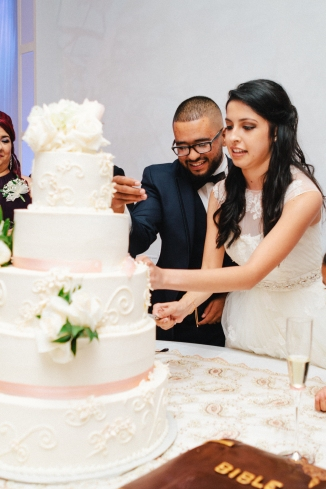 bride and groom cut their cake